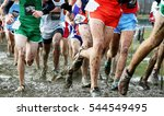 high school boys compete at the ...   Shutterstock . vector #544549495