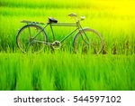 Bicycle In The Green Rice...