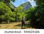 borneo jungle trekking. woman... | Shutterstock . vector #544624186