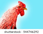 portrait of a rooster's head.... | Shutterstock . vector #544746292