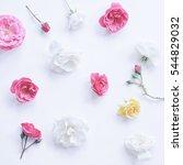 assorted roses heads on white... | Shutterstock . vector #544829032