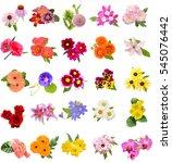 Flower Bouquet  Seasonal...