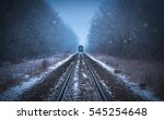 Train Tracks In Winter Mist A...