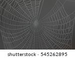dew drops on a spider web... | Shutterstock . vector #545262895