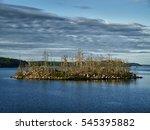 Island Marsh Scenes From...