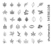 leaf icons set  vector... | Shutterstock .eps vector #545581108