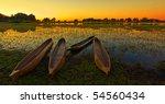 sunrise over the okavango delta ...   Shutterstock . vector #54560434