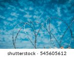 protective coils of sharp... | Shutterstock . vector #545605612
