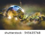 glass bubble in forest | Shutterstock . vector #545635768