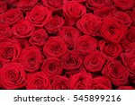 big red roses in a group ... | Shutterstock . vector #545899216