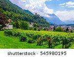 gutenberg castle in the... | Shutterstock . vector #545980195