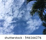 blue sky with trees | Shutterstock . vector #546166276