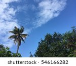 blue sky with trees | Shutterstock . vector #546166282