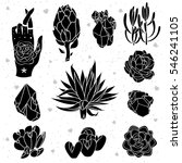 set of black succulents ... | Shutterstock .eps vector #546241105