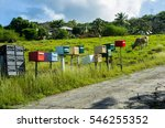Post Boxes On Guadeloupe...