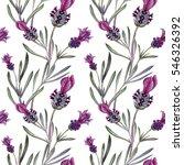 lavender pattern. flower... | Shutterstock . vector #546326392
