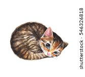 Stock photo sleepy cat cute watercolor illustration with kitten 546326818