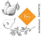 pear vector illustration. hand... | Shutterstock .eps vector #546478732