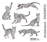 silhouette cats pattern... | Shutterstock .eps vector #546508552