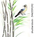 bird and bamboo | Shutterstock . vector #546559192
