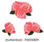 beautiful pink roses with... | Shutterstock .eps vector #54656809