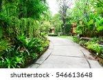 cement pathway through a green...   Shutterstock . vector #546613648