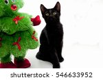 Stock photo black kitten and toy christmas tree isolated on white background 546633952
