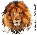 Stock photo lion watercolor illustration 546634495