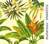 tropical exotic plumeria... | Shutterstock .eps vector #546665512