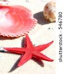 starfish and shells | Shutterstock . vector #546780