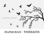 Flock Of Flying Birds On Tree...