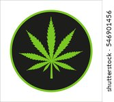 cannabis leaf on a black... | Shutterstock .eps vector #546901456