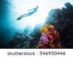 free diver gliding underwater... | Shutterstock . vector #546950446