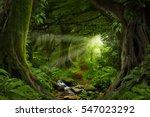 deep tropical jungles of...   Shutterstock . vector #547023292
