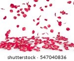 Stock photo rose petals fall to the floor isolated background 547040836
