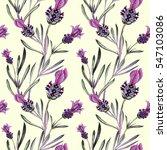 lavender pattern. flower... | Shutterstock . vector #547103086