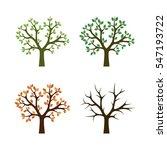 Four Season Trees Vector...