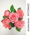 Beautiful Rose On White...