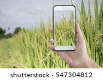 hand holding smartphone with... | Shutterstock . vector #547304812