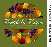 fresh farm fruits. vector fruit ... | Shutterstock .eps vector #547436566