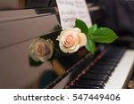 the white rose lying on retro...   Shutterstock . vector #547449406