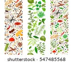 popular culinary herbs and... | Shutterstock .eps vector #547485568