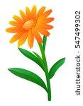 calendula flower in orange... | Shutterstock .eps vector #547499302