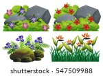 different types of flowers in... | Shutterstock .eps vector #547509988