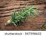 the fresh green rosemary bound... | Shutterstock . vector #547598632