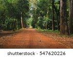 Dusty Tropical Road