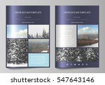 business templates for brochure ... | Shutterstock .eps vector #547643146