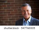 head and shoulders portrait of... | Shutterstock . vector #547760335