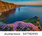 ireland countryside tourist... | Shutterstock . vector #547782955