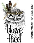 owl. forest bird illustration.... | Shutterstock . vector #547838182